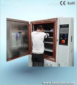 BPH-100B 10年厂家直销高低温湿热试验箱