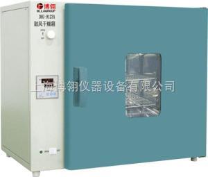 DHG-9123A 臺式鼓風干燥箱