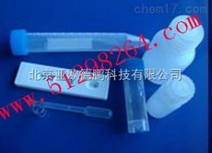 DP-MS 庆大霉素胶体金检测试纸条/亚欧庆大霉素胶体金检测试纸条