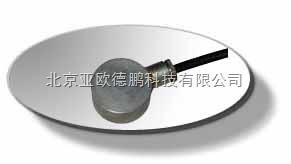 DP/DYB-2 电阻式应变式土压力计 应变式土压力计