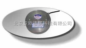 DP-DYB4 电阻应变式土压力计DP-DYB4