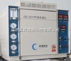 DP-GS-2010 (Z) 氧化锆气相色谱仪/