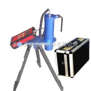DP-DH806-EX 环境级X.γ剂量率仪/X.γ剂量率仪//辐射监测仪/射线检测仪