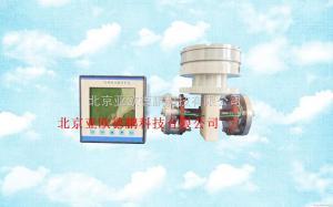 DP-IV 微机化电导率浓度自动分析仪/在线式氢氧化钠检测仪/在线氢氧化钠浓度计
