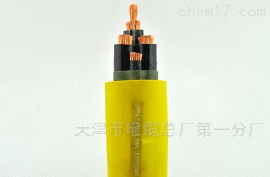 YCW-3*70+1*25橡胶电缆