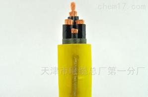 橡套软电缆YC3*10+1*6