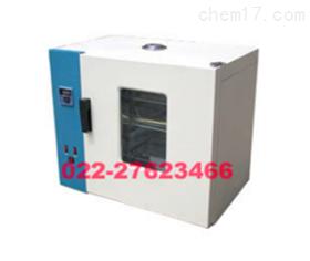 电热鼓风干燥箱101-3