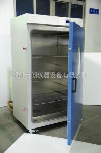大型立式精密鼓风干燥箱BPG-9620A