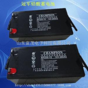 NP200-12 *蓄電池NP200-12 免維護鉛酸電池200AH