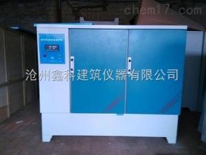 YH-60B混凝土标准恒温恒湿养护箱