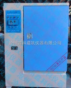 YH-60B 恒温恒湿标准养护箱 YH-60B混凝土养护箱