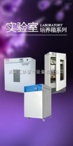 LRH-70 上海一恒科学仪器有限公司生化培养箱