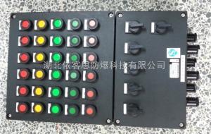 BXK8050-A4B2D1全塑防爆防腐控制箱
