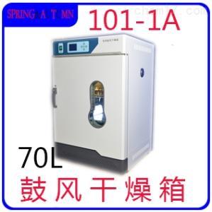 101-1A 立式鼓風干燥箱