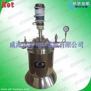 HY 0.2L加热磁力密封反应釜