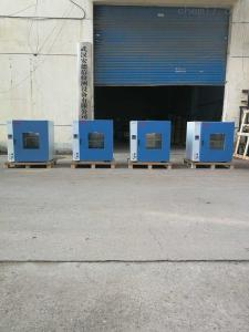 ADX-DHG-9203A 武漢熱循環鼓風烘箱