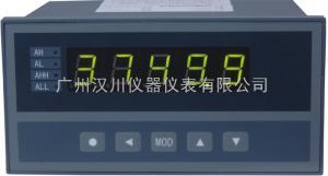 XSE/A-H1IB1V0 單輸入通道儀表