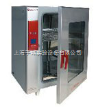 BPX-82 电热恒温培养箱