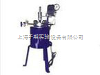 CJF-2 2L 磁力搅拌高压反应釜