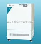 HWS-250 恒溫恒濕箱