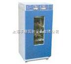 LHS-250HC-I 恒溫恒濕箱