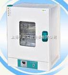 WPZ-20B 电热恒温培养箱