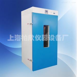 300度立式鼓風干燥箱DHG-9075A