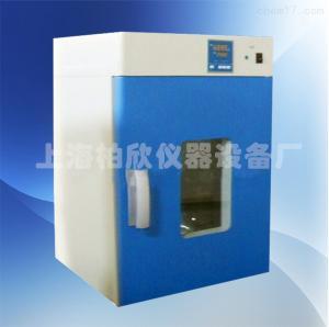 250度立式鼓风干燥箱DHG-9070A