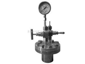 25ml,50ml,100ml,200ml,250ml高壓反應釜/高壓消解罐