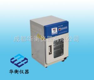 DH-250 恒温型培养箱