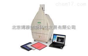 凝胶成像系统ChemiDoc™ XRS+