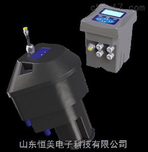 HM-ZD30 恒美HM-ZD30在线浊度仪厂家