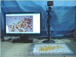 ECA-TX01 自動葉片/種子分析儀