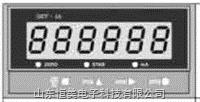 GkT-1A 重量变送器