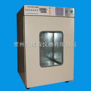 PYX-DH280-JBS 电热恒温培养箱